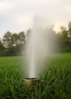 The Requirements That Are Needed In Florida Landscaping We Offer State Of Art Irrigation Systems Which Meet Local And Regional Demands For